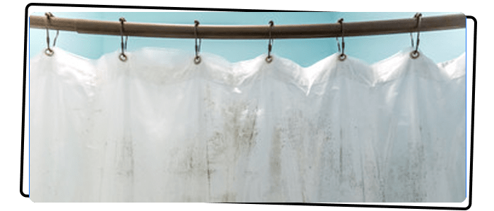 Curtain Stain And Mould Treatment Gordon
